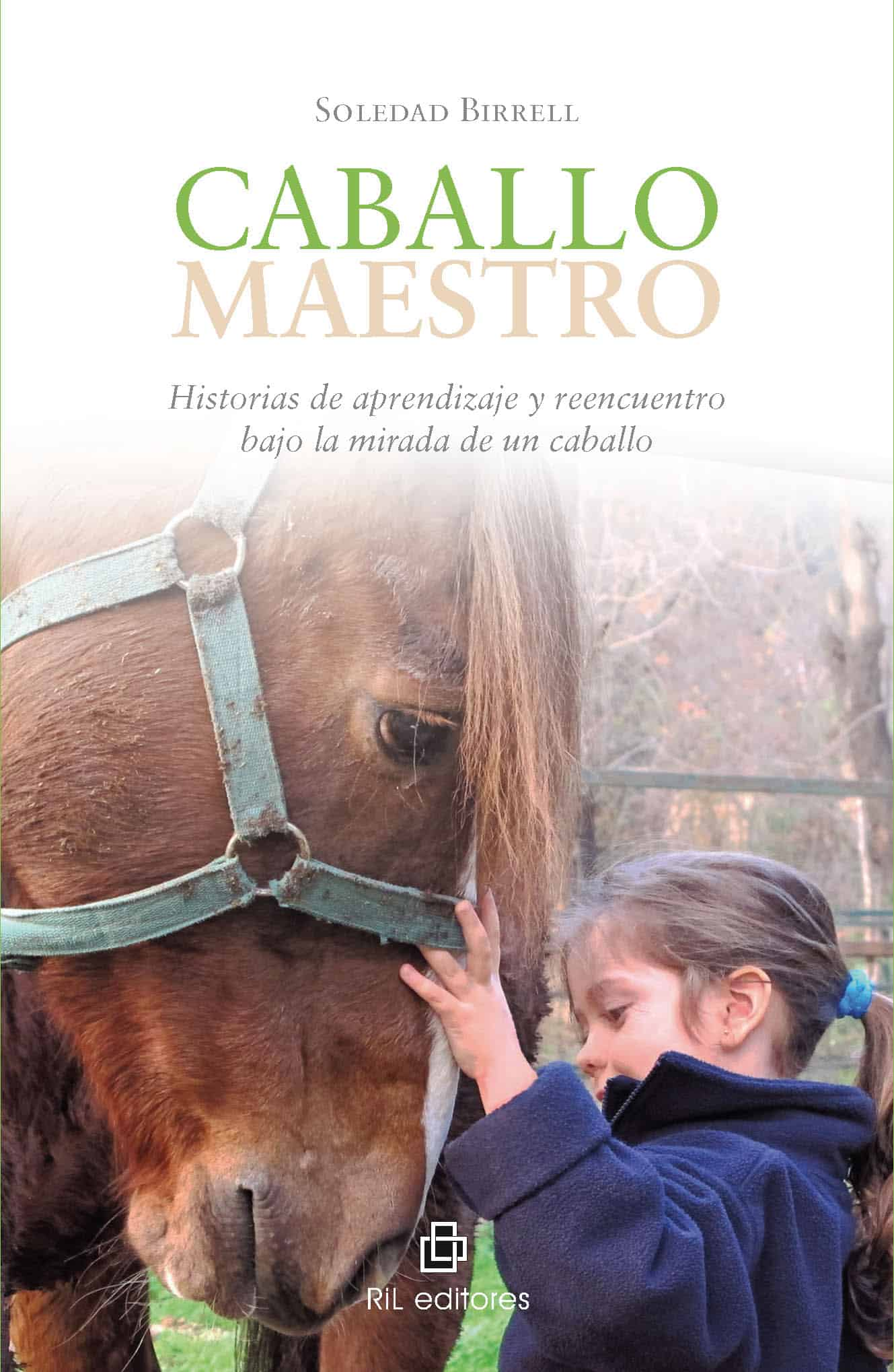 Caballo maestro: historias de aprendizaje y reencuentro bajo la mirada de un caballo 1