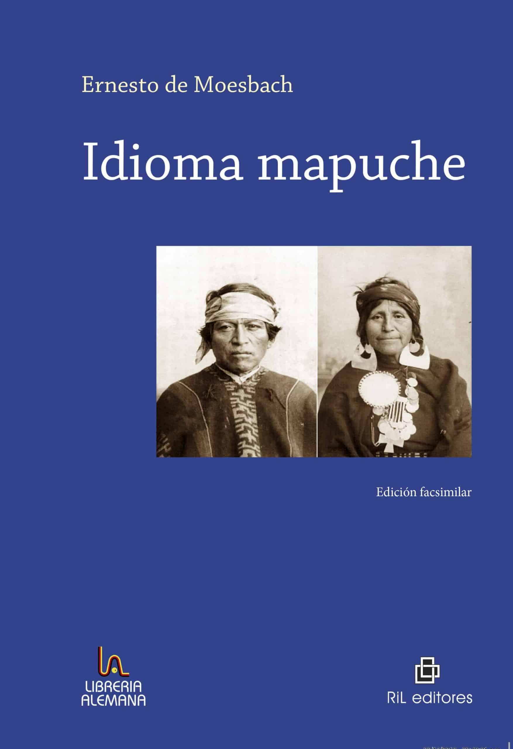 Idioma mapuche 1